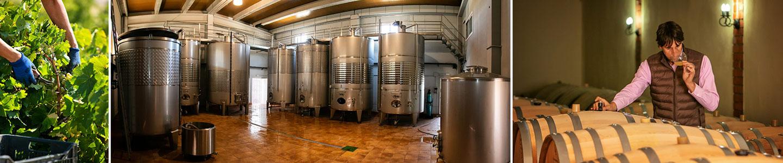 Arroyo Izquierdo wijnen