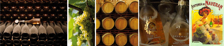 Naveran Wine making