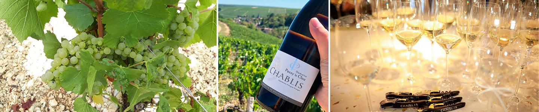 wijn Passy le Clou Frankrijk