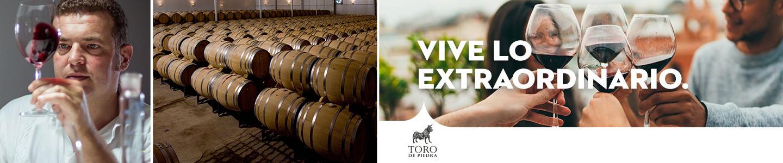 Toro de Piedra Chileense top wijnen reserva
