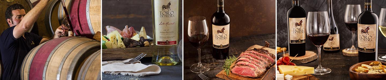 Toro de Piedro wijn gerecht Chili
