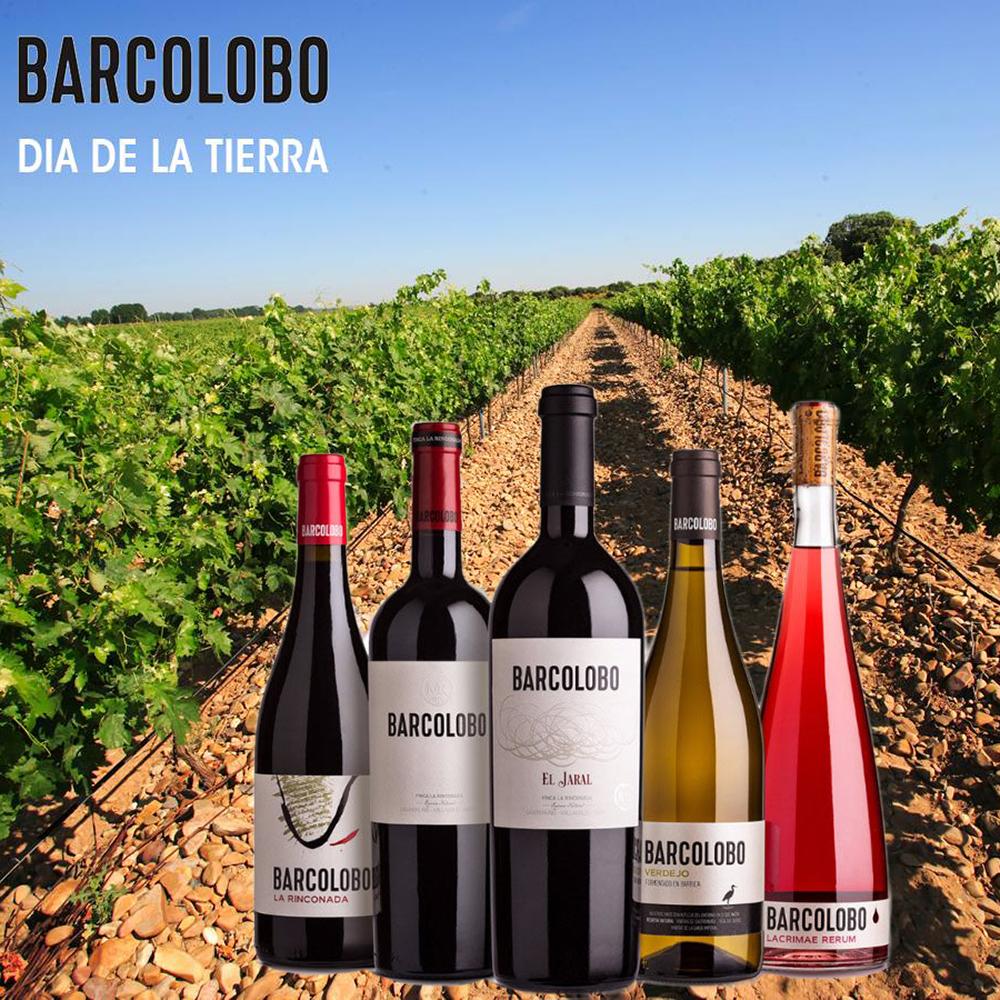 Barcolobo wijn Spanje promo
