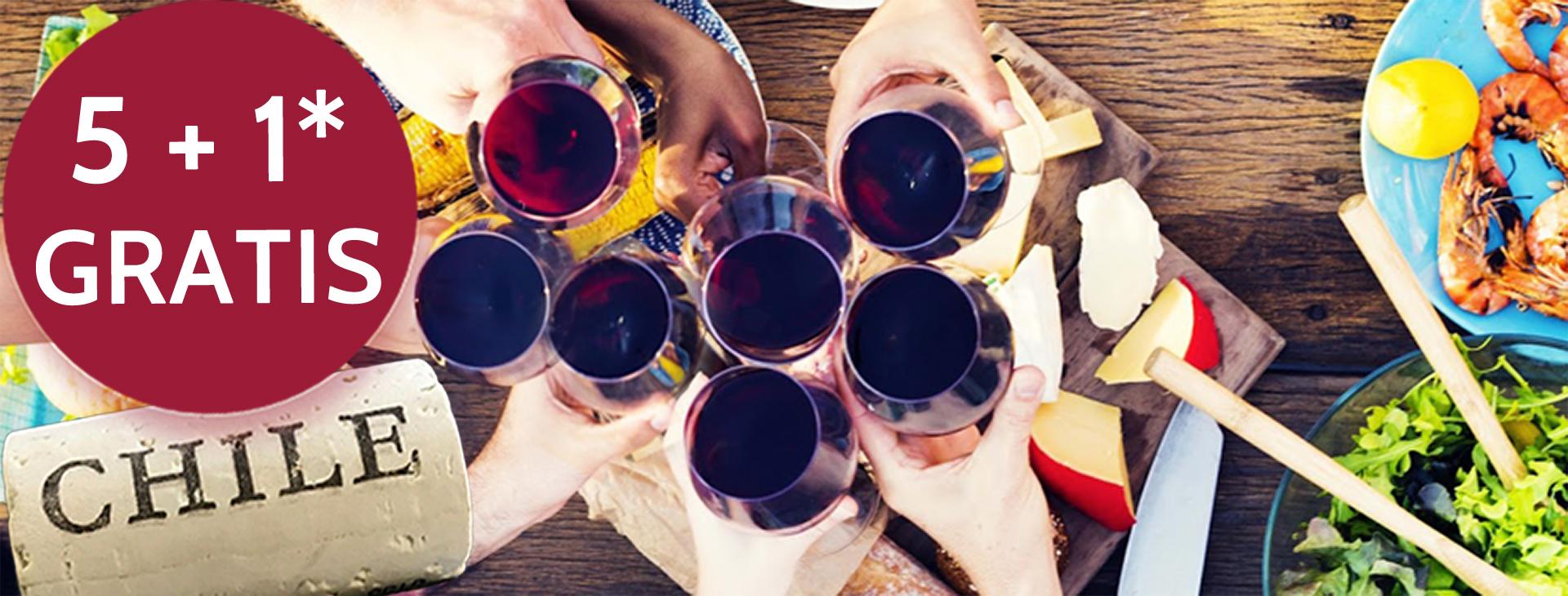 Promo Chileense wijnen