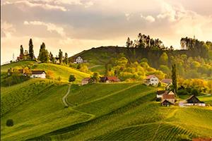 Oostenrijkse wijnen