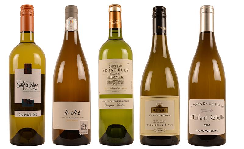 Pladijs wijnen wit gerecht