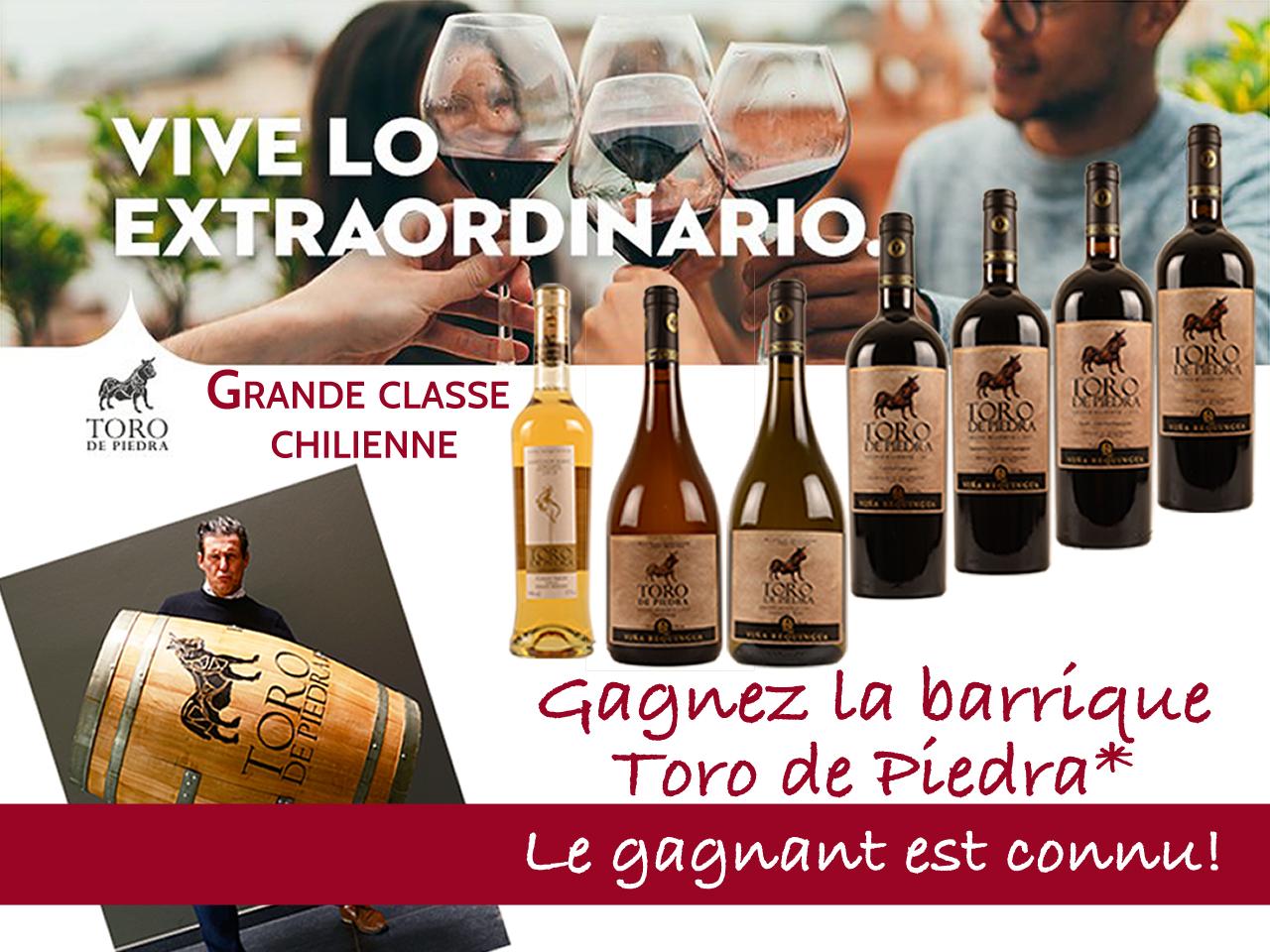 Toro de piedra promo 5+1 offerte gratuite vins Chile