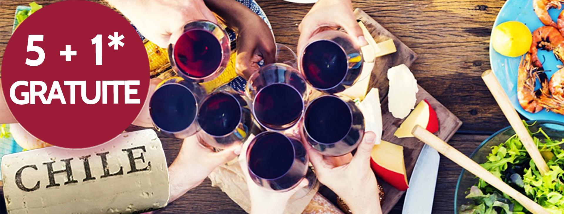Promo vins chiliens