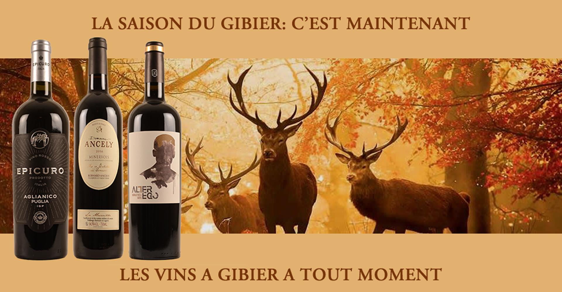 Gibier et vin
